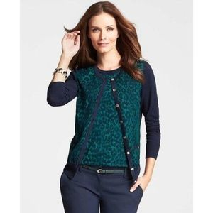 Ann Taylor Navy & Turquoise Leopard Print Cardigan